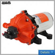 51 Series Pump (19LPM) - 12/24V