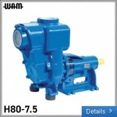 3PH Horizontal Axis Self-Priming Pump